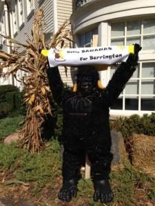 Yes, you read that right. That's a gorilla scarecrow. And it probably consists of a gorilla suit with straw.