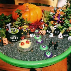 Seems like this person got a little creative with this miniature garden. I mean there's a pumpkin with some painted gravestones and an eyeball trail. The cauldron looks perfect for a witch's lair.