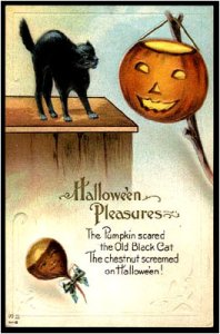"From I-Mockery: ""While the cat looks frightened, the chestnut doesn't seem to be screaming. In fact, it looks quite pleased with how things worked out. My guess is that the chestnut planned this whole ""scare the cat"" prank. The lesson we all learned here? Chestnuts are dicks."""