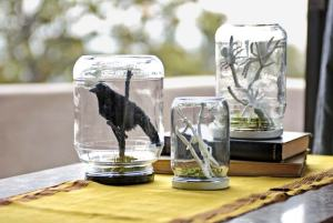 Well, these are terrariums. But these consist of a crow, a white preying mantis, and some white spiders.