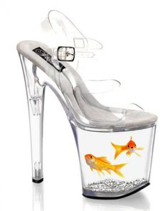 That it has two goldfish in it. Hope they were taken out after the photo shoot. Or just photoshopped on here.