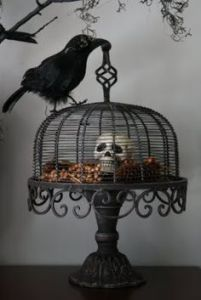 Guess the raven kept it in a cage for years. Not sure what it wants to do with it.