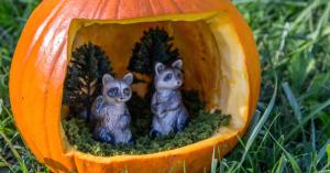 Yes, these are cute inside your pumpkin. But they can be a terror in your trash bin.