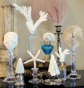 You can uses bottles and candle sticks for these. Depends on the seashell in question.
