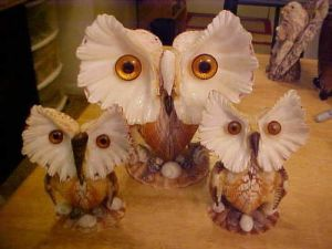 I guess seashell owls would be easier to make than a lot of seashell animals. But these are truly stunning to look at.