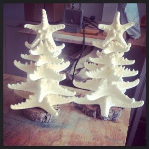 For some reason, starfish trees like these don't remind me of Christmas. Mostly because I tend to picture snow when there isn't in my area.