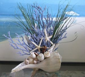 Helps if it has purple gorgonian, too. Yes, atypical shells do exist, too.