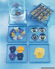 Actually you can make glass coasters with any flower. It's just these are with pansies.
