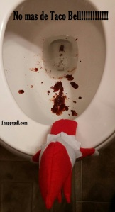 Okay, that's really disgusting. But I'm sure it can be easily flushed away. Yeah, he's got diarrhea real bad.