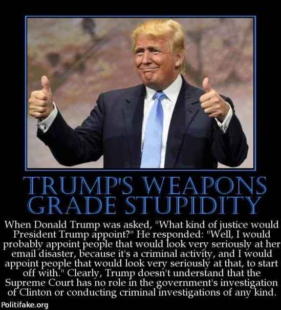 trumps-weapons-grade-stupidity-when-donald-trump-was-asked-w-politics-1459555941