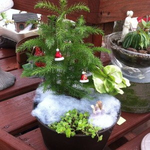 And this is all what this garden has for Christmas decorations. Well, there's still cotton snow though.