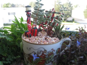 This is of the tea cup garden variety which is small. Still, like the candy cane lamp post.