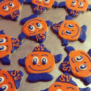 To those who can't wrap their heads around why a school in upstate New York has an orange for its mascot: Don't ask me. I know it's stupid. But I wasn't consulted.