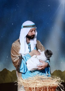 However, nativity scene photo reenactments can only go so far. Having your baby play baby Jesus? Fine and perfectly normal. Having your cat play baby Jesus? What the fuck?