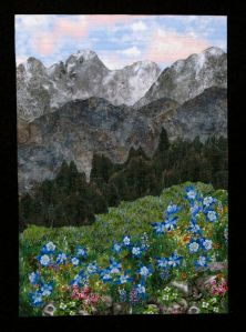 This one even has blue flowers on a hillside. Love the background though.