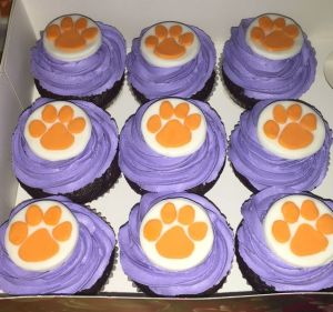 Still, I'm not sure if purple and orange go together. But I know they don't look great on a tiger.