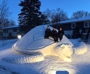 Well, you can surely climb aboard this large snow turtle. You read that right. Nevertheless, it's incredible.