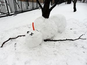 I know this is a sick and twisted way to build a snowman. But somehow it works by having a tree grow out of him.