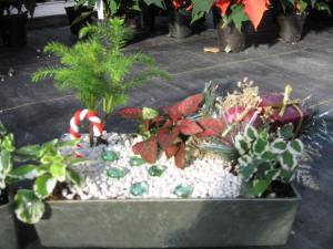 This one also has a few decorations on it as well. But the lone candy cane stands out.