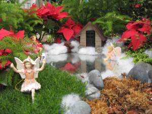This one uses poinsettias that make an ideal Christmas garden addition. And not just miniature ones either.