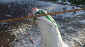 Getting under a limbo stick is tricky. But it's especially difficult if you're made of snow.