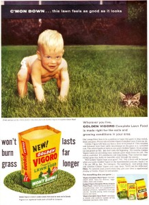 So go ahead let your toddler play outside with his diaper. Then again, from that boy's look, I feel more for the cat.