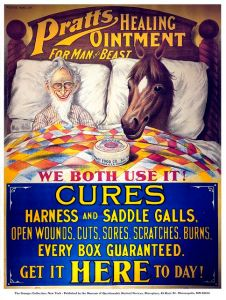 However, going to bed with your horse, well, that's not necessarily encouraged. Seriously, that's kind of sick if you think about it.
