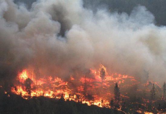Bald-Mountain-Fire_Kaitlyn-Dorion-1-e1502591575660