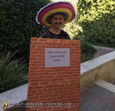 a7b57cbcf0ef11f4adac47353029560e--mexican-costume-donald-trump