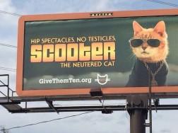 hilarious-billboard-signs-17
