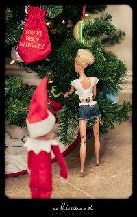elf-shelf-robinwood_0271