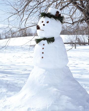 0106_msl_snowman_xl