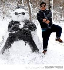 3e46e7c08664866d4f3be78620843cf8--snowmen-pictures-funny-snowman