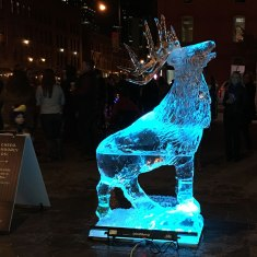 Estes-Park-Ice-Sculpture