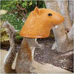 Big-Head-Squirrel-Feeder1