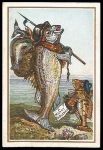 fish-card-1