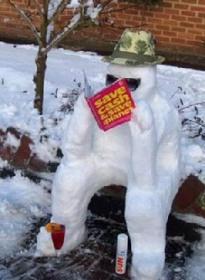 snowman_cash