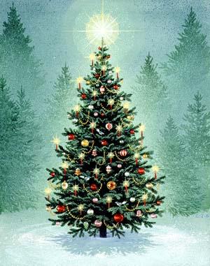 tree_dimly_lit_trees