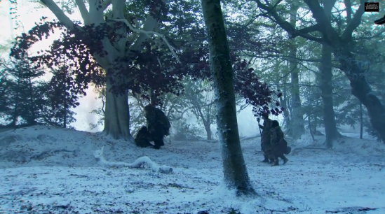 Game_of_thrones_season_4_beyond_wall_weirwood