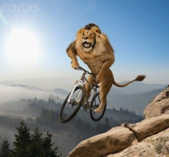 Lion-on-a-bicycle1
