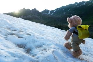Top-10-Worst-Stock-Photos-for-Your-Marketing-08-bear-on-the-go-climbing-mountain