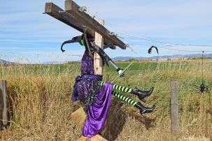 scarecrow3